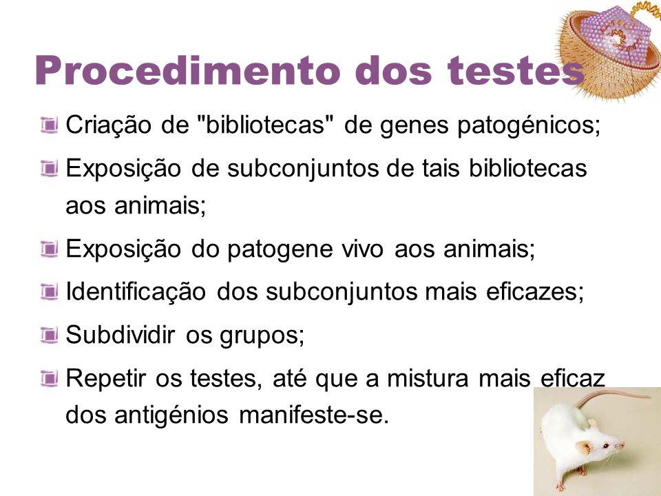 Procedimento dos testes