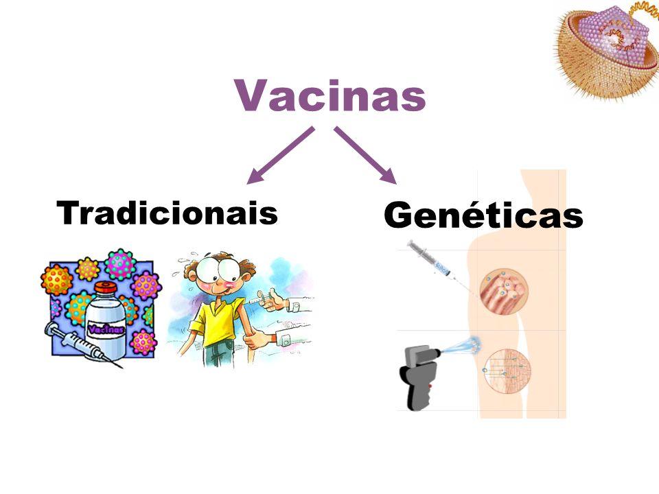 Vacinas Tradicionais Genéticas