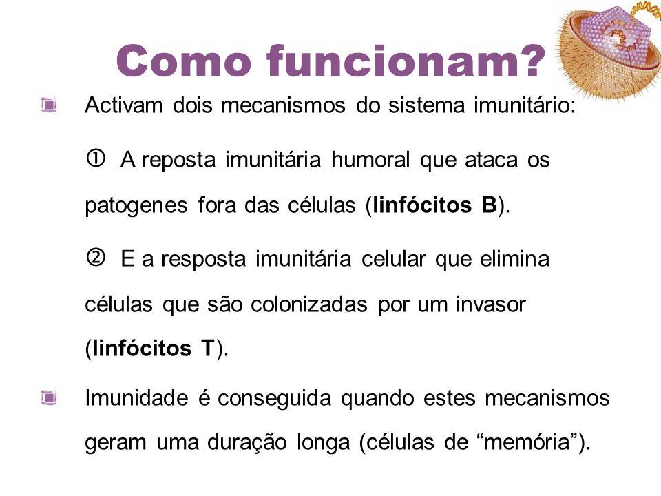 Como funcionam Activam dois mecanismos do sistema imunitário: