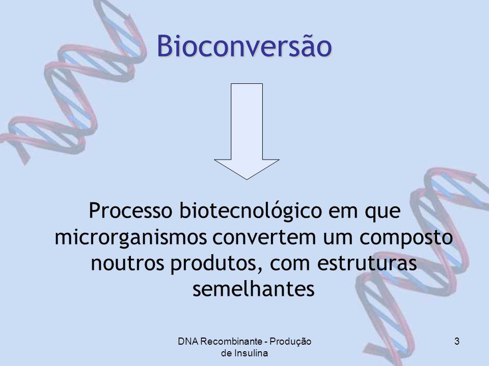 DNA Recombinante - Produção de Insulina
