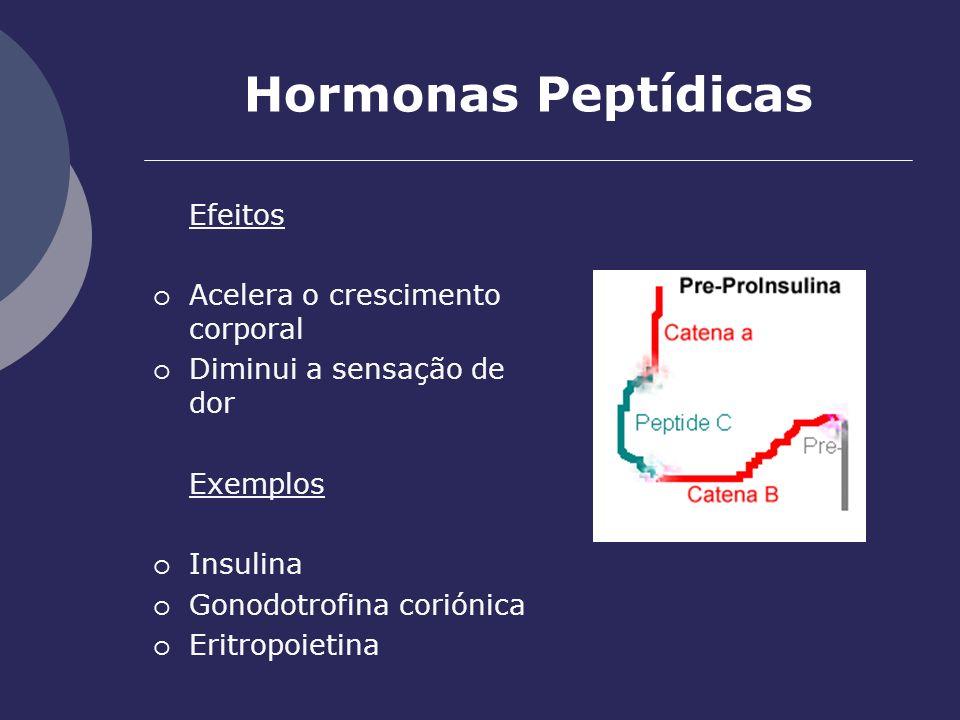 Hormonas Peptídicas Efeitos Acelera o crescimento corporal