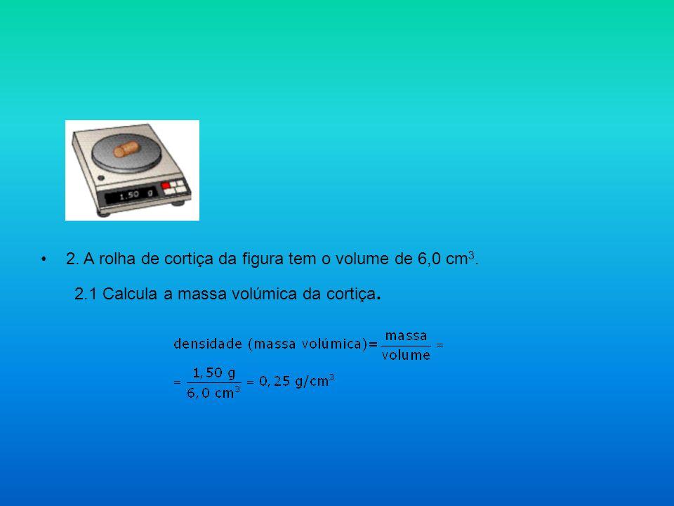 2. A rolha de cortiça da figura tem o volume de 6,0 cm3.