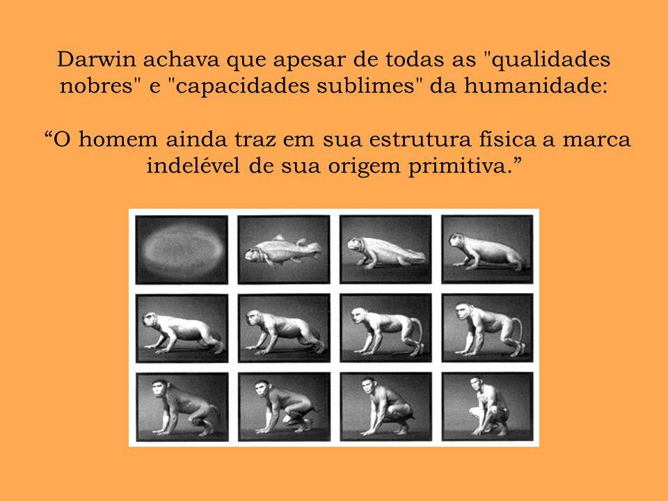Darwin achava que apesar de todas as qualidades nobres e capacidades sublimes da humanidade: O homem ainda traz em sua estrutura física a marca indelével de sua origem primitiva.