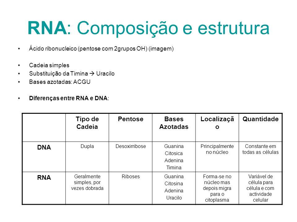 RNA: Composição e estrutura