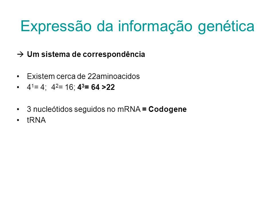 Expressão da informação genética