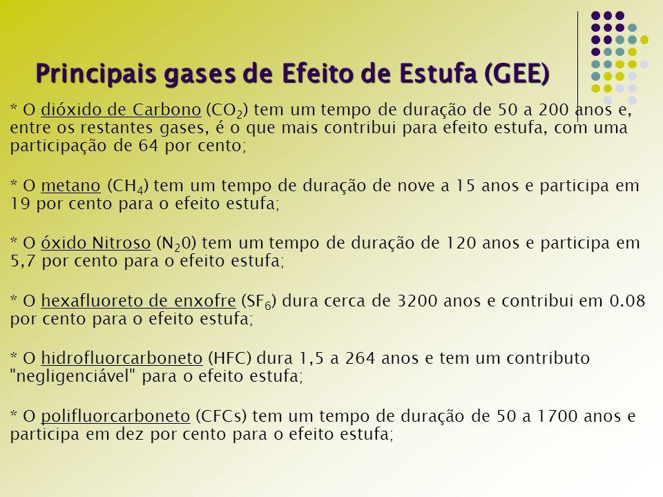 Principais gases de Efeito de Estufa (GEE)