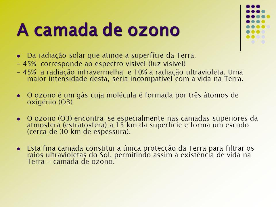 A camada de ozono Da radiação solar que atinge a superfície da Terra: