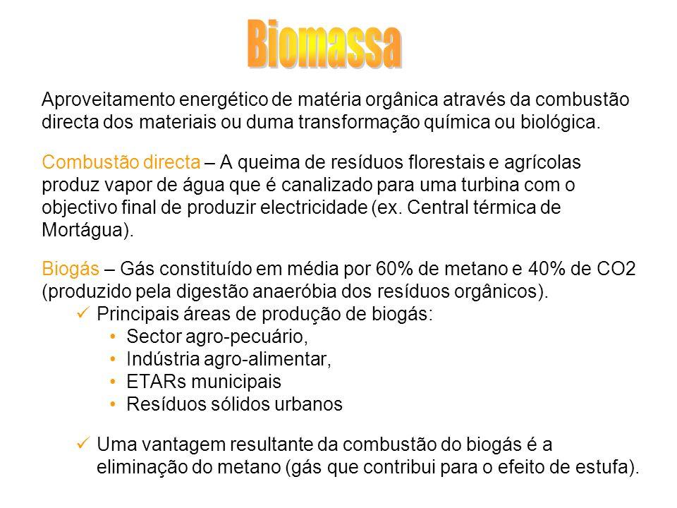 Biomassa Aproveitamento energético de matéria orgânica através da combustão. directa dos materiais ou duma transformação química ou biológica.