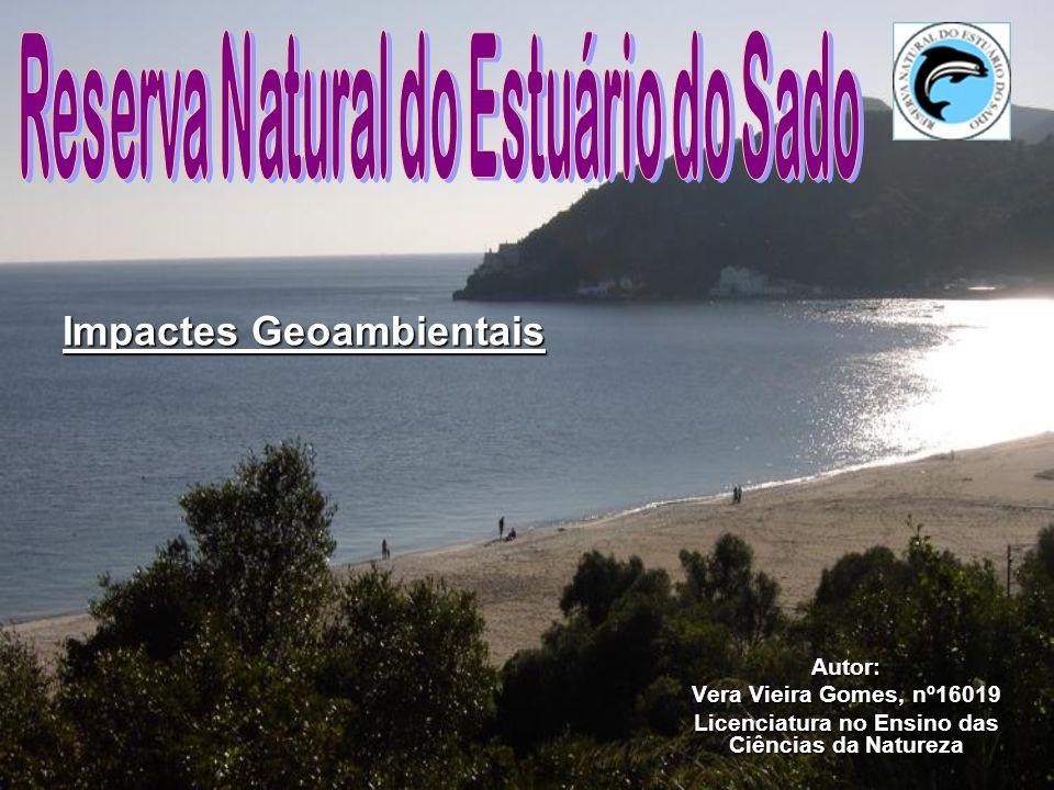 Impactes Geoambientais