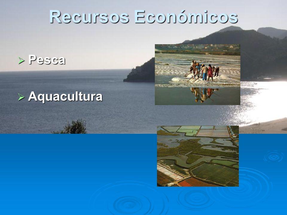 Recursos Económicos Pesca Aquacultura