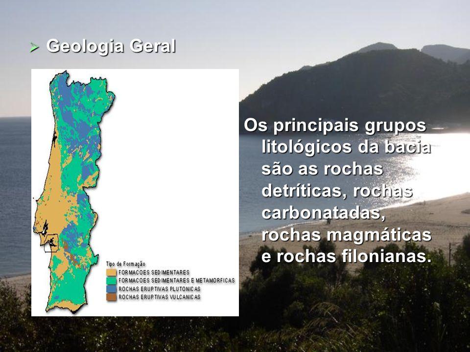 Geologia Geral Os principais grupos litológicos da bacia são as rochas detríticas, rochas carbonatadas, rochas magmáticas e rochas filonianas.