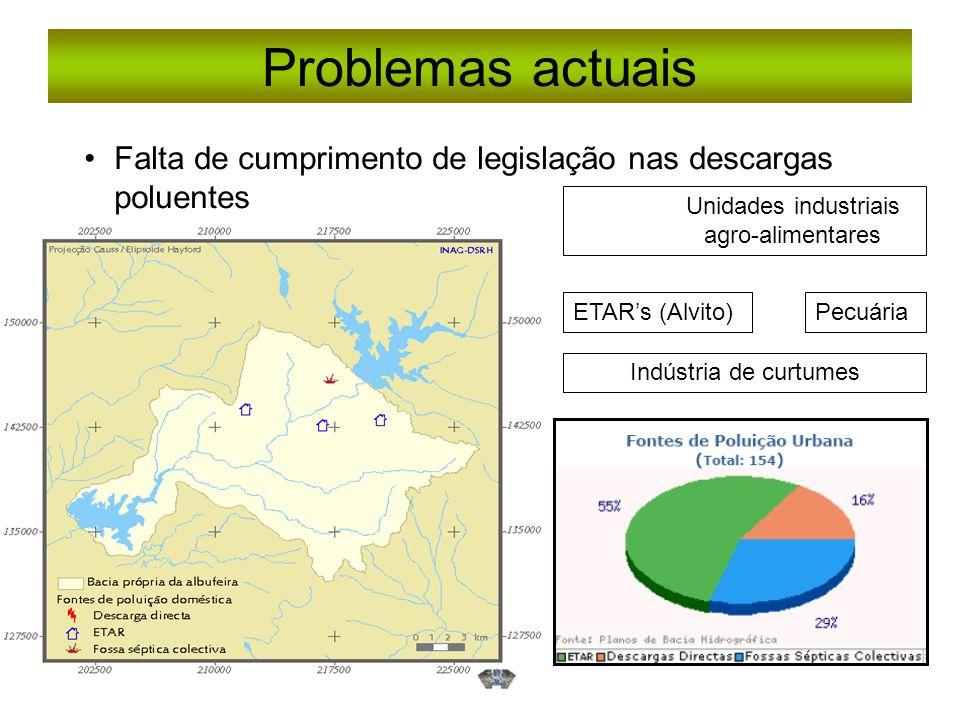 Problemas actuais Falta de cumprimento de legislação nas descargas poluentes. Unidades industriais.