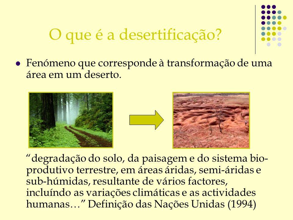 O que é a desertificação