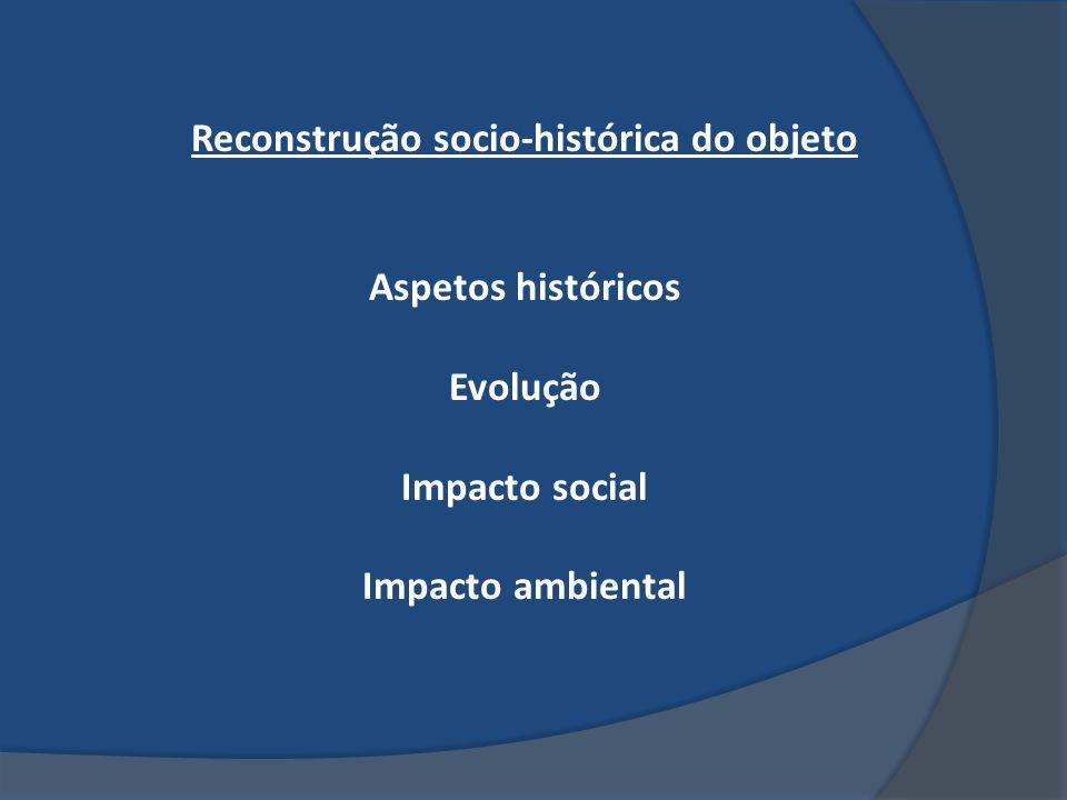 Reconstrução socio-histórica do objeto