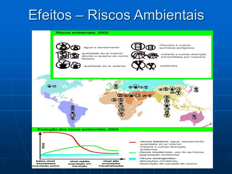 Efeitos – Riscos Ambientais