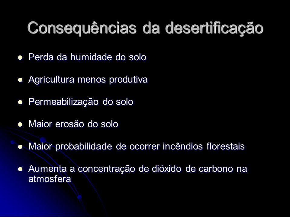 Consequências da desertificação