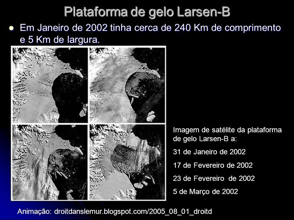 Plataforma de gelo Larsen-B