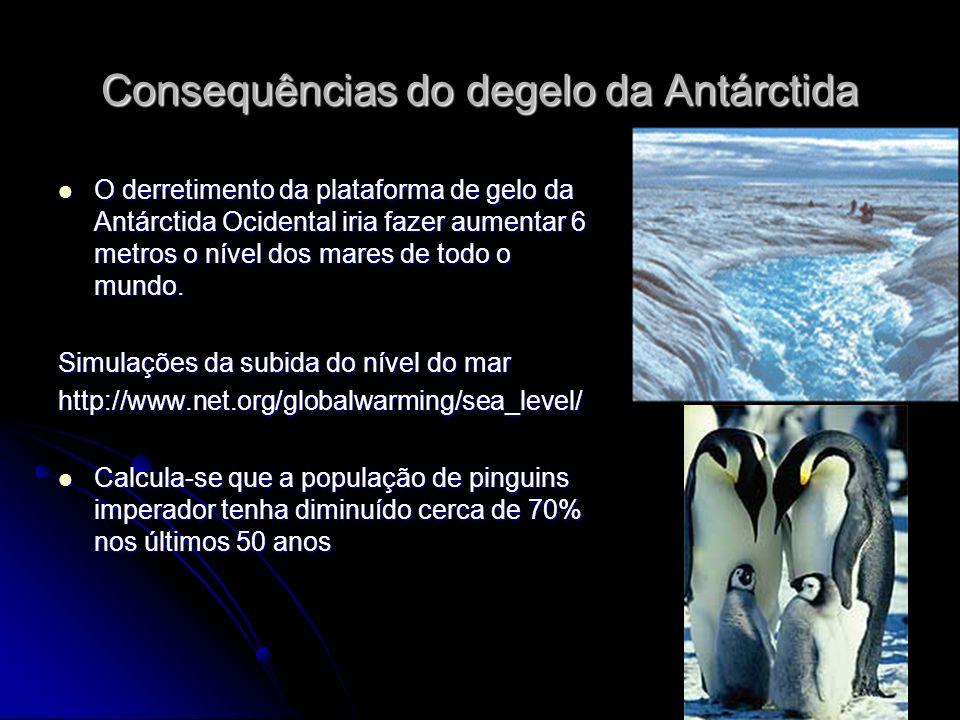 Consequências do degelo da Antárctida