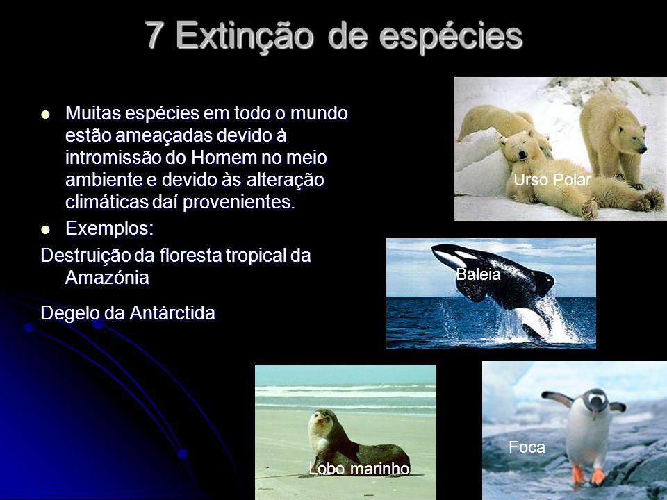 7 Extinção de espécies