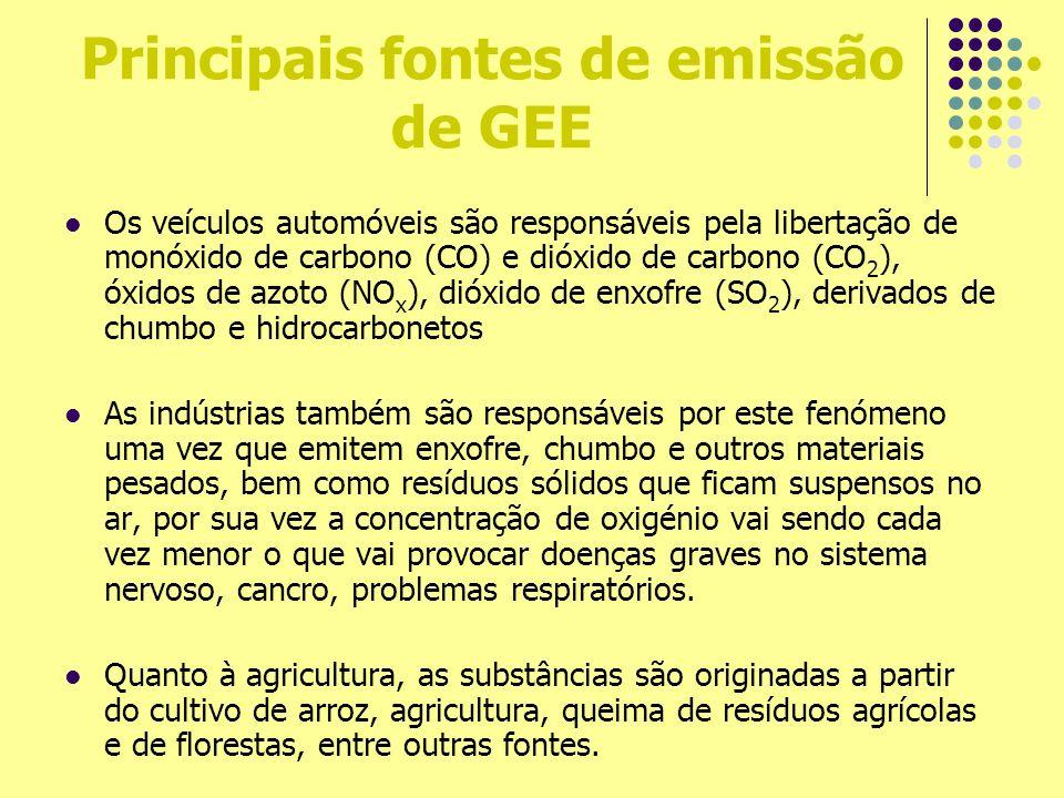 Principais fontes de emissão de GEE