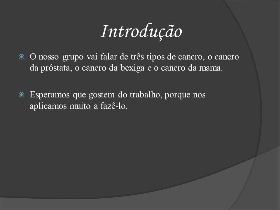 Introdução O nosso grupo vai falar de três tipos de cancro, o cancro da próstata, o cancro da bexiga e o cancro da mama.