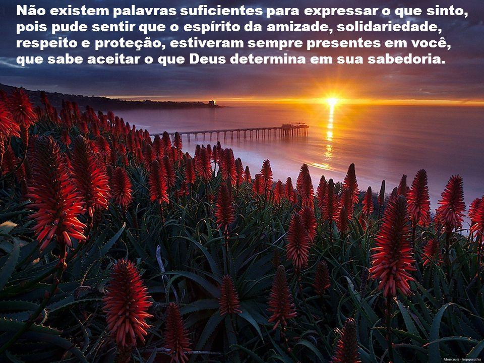 Não existem palavras suficientes para expressar o que sinto, pois pude sentir que o espírito da amizade, solidariedade, respeito e proteção, estiveram sempre presentes em você, que sabe aceitar o que Deus determina em sua sabedoria.