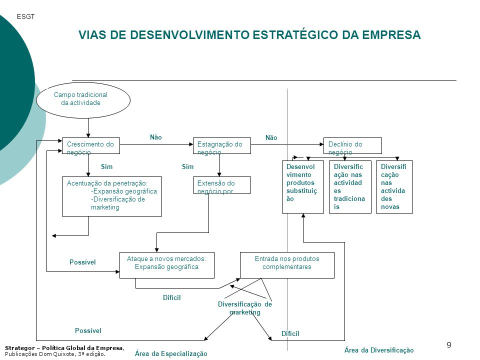 VIAS DE DESENVOLVIMENTO ESTRATÉGICO DA EMPRESA