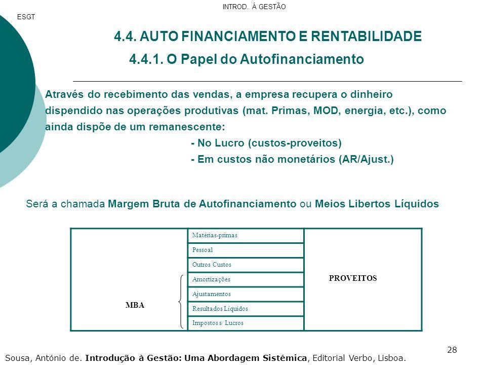 4.4. AUTO FINANCIAMENTO E RENTABILIDADE