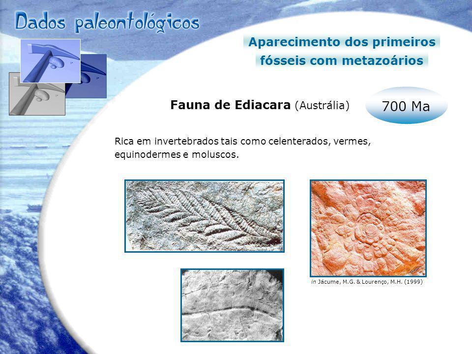 700 Ma Aparecimento dos primeiros fósseis com metazoários