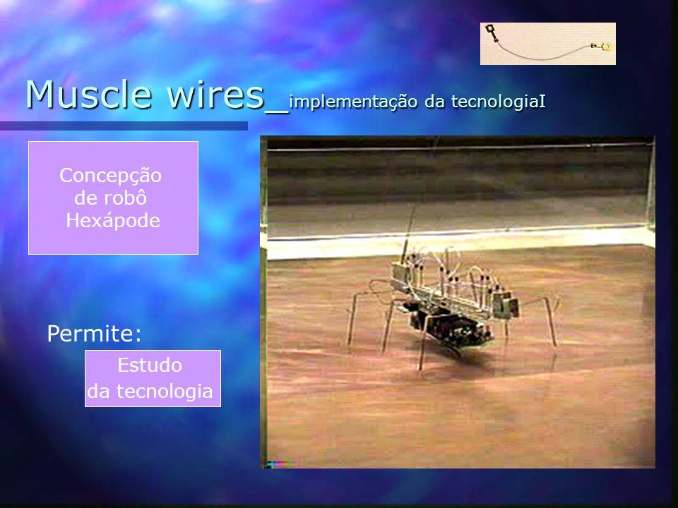 Muscle wires_implementação da tecnologiaI