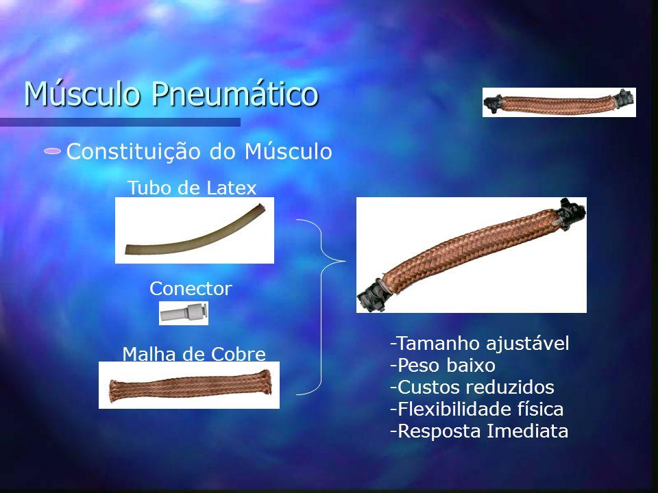 Músculo Pneumático Constituição do Músculo Tubo de Latex Conector