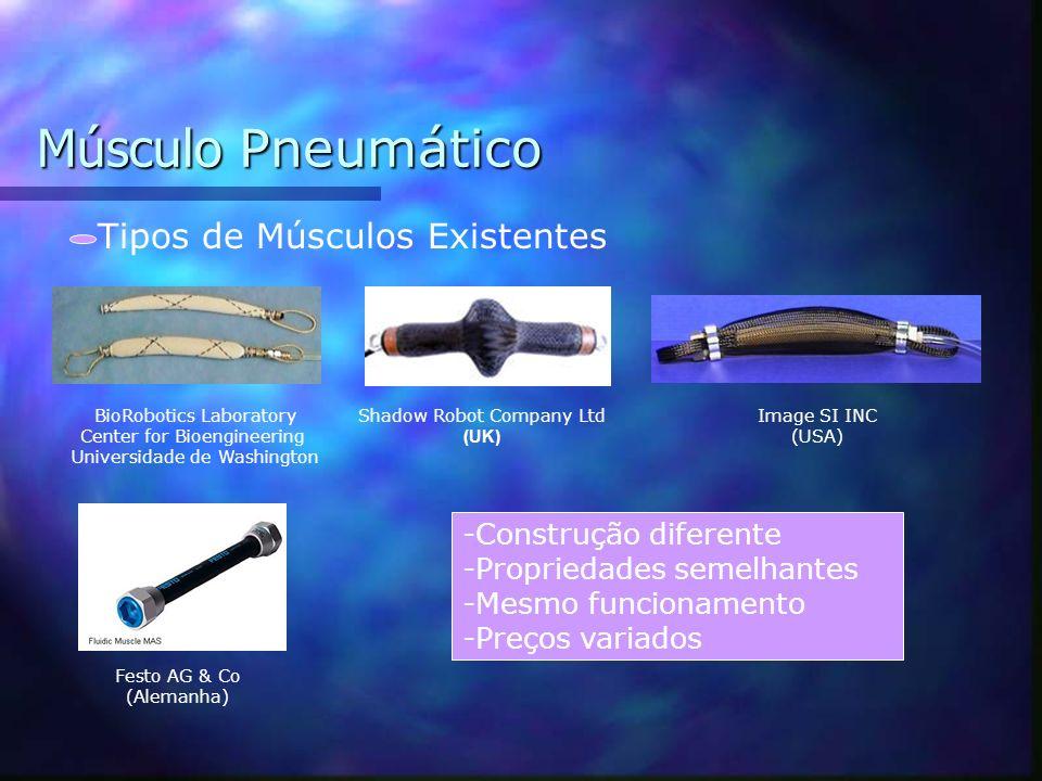 Músculo Pneumático Tipos de Músculos Existentes -Construção diferente