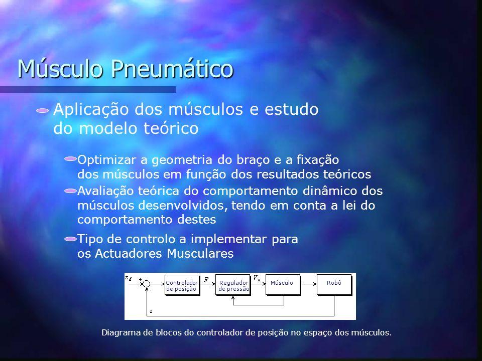 Músculo Pneumático Aplicação dos músculos e estudo do modelo teórico