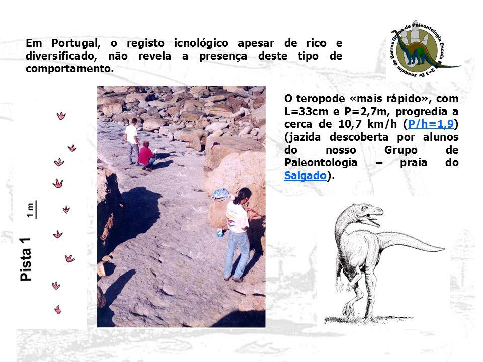 Em Portugal, o registo icnológico apesar de rico e diversificado, não revela a presença deste tipo de comportamento.