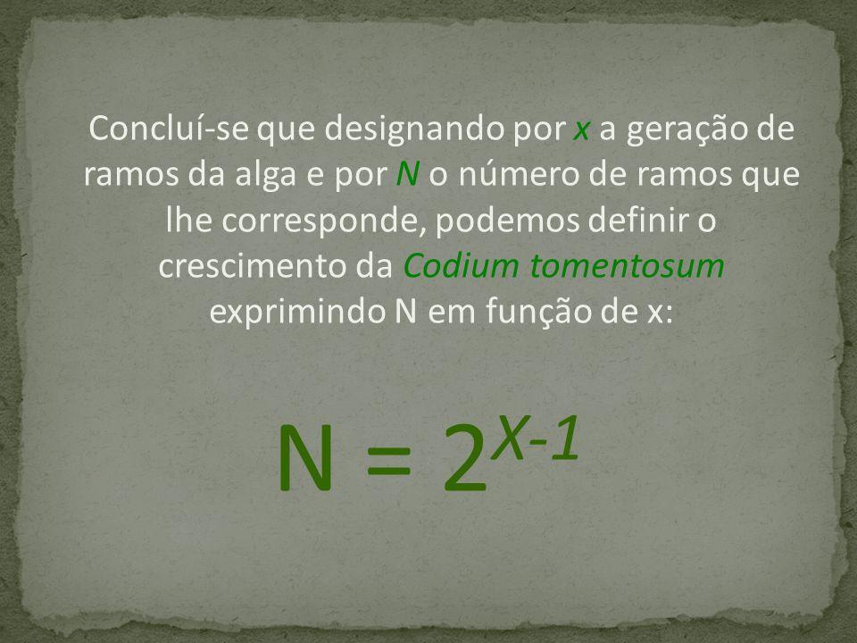 Concluí-se que designando por x a geração de ramos da alga e por N o número de ramos que lhe corresponde, podemos definir o crescimento da Codium tomentosum exprimindo N em função de x: