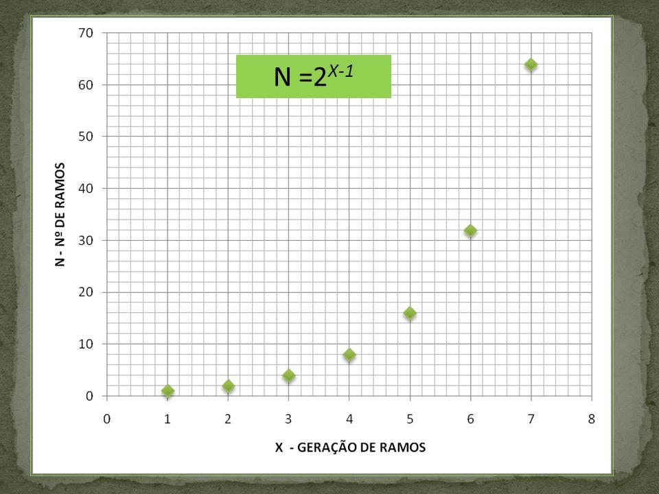N =2X-1