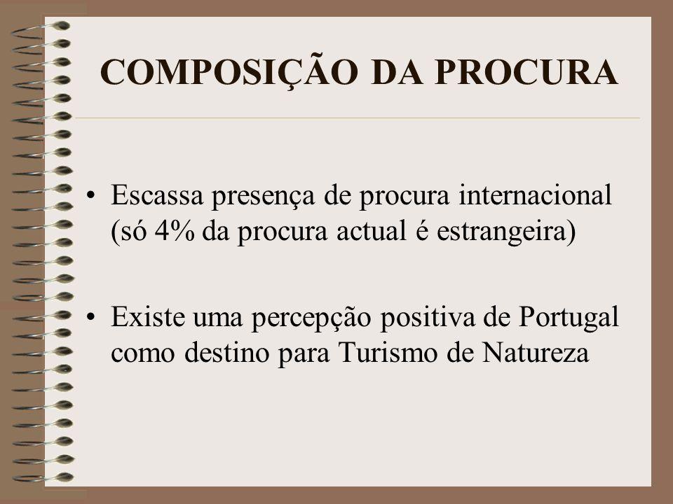 COMPOSIÇÃO DA PROCURAEscassa presença de procura internacional (só 4% da procura actual é estrangeira)