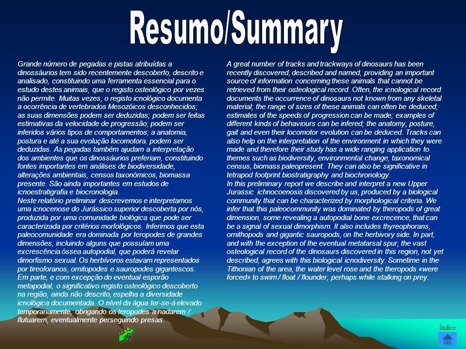 Resumo/Summary