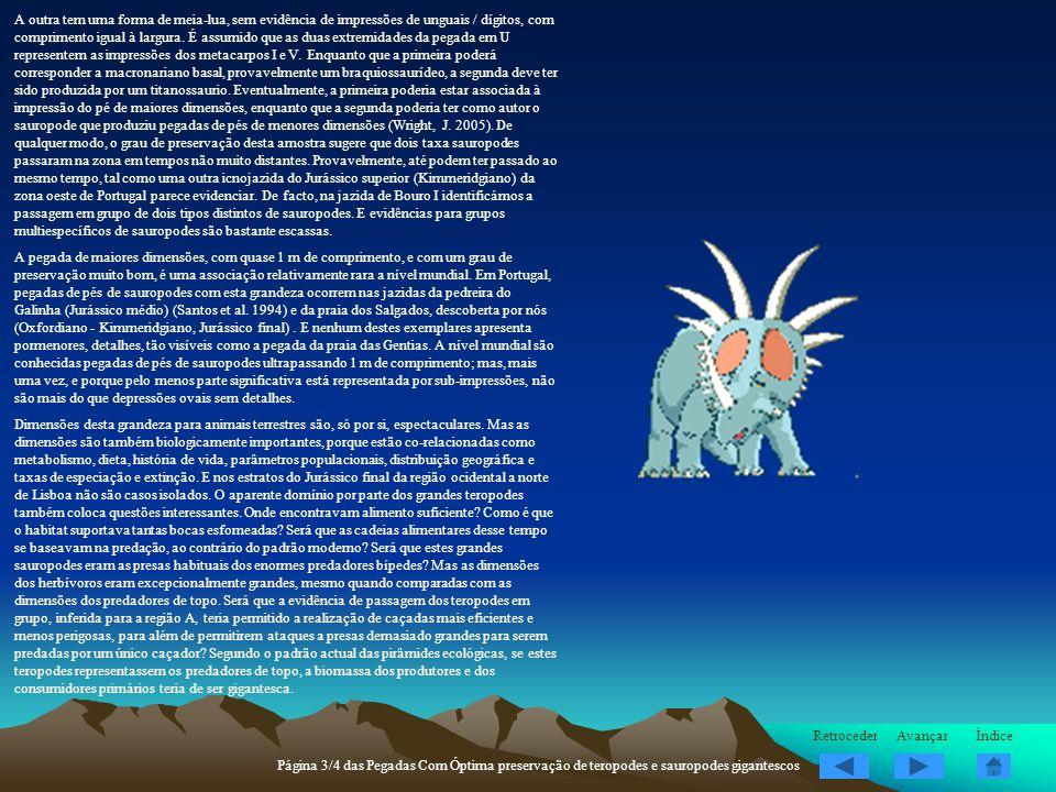 A outra tem uma forma de meia-lua, sem evidência de impressões de unguais / dígitos, com comprimento igual à largura. É assumido que as duas extremidades da pegada em U representem as impressões dos metacarpos I e V. Enquanto que a primeira poderá corresponder a macronariano basal, provavelmente um braquiossaurídeo, a segunda deve ter sido produzida por um titanossaurio. Eventualmente, a primeira poderia estar associada à impressão do pé de maiores dimensões, enquanto que a segunda poderia ter como autor o sauropode que produziu pegadas de pés de menores dimensões (Wright, J. 2005). De qualquer modo, o grau de preservação desta amostra sugere que dois taxa sauropodes passaram na zona em tempos não muito distantes. Provavelmente, até podem ter passado ao mesmo tempo, tal como uma outra icnojazida do Jurássico superior (Kimmeridgiano) da zona oeste de Portugal parece evidenciar. De facto, na jazida de Bouro I identificámos a passagem em grupo de dois tipos distintos de sauropodes. E evidências para grupos multiespecíficos de sauropodes são bastante escassas.