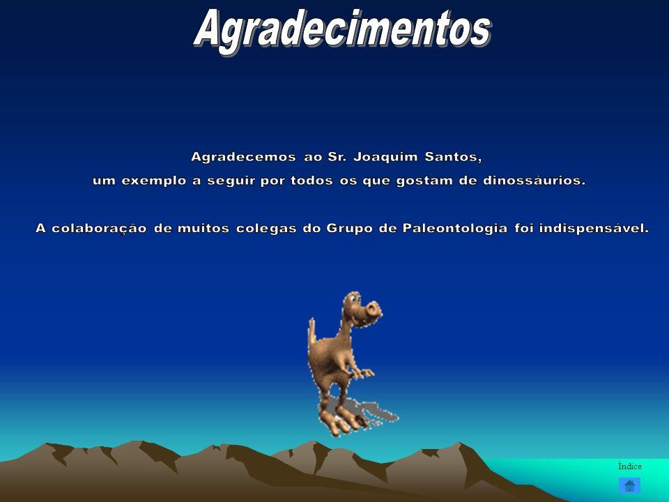 Agradecimentos Agradecemos ao Sr. Joaquim Santos,