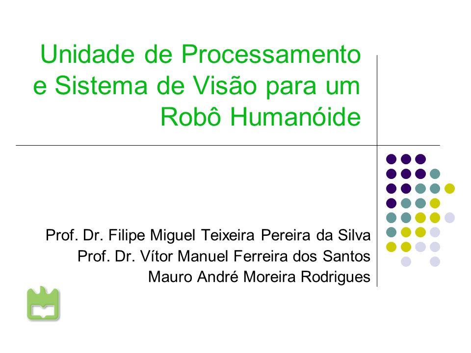 Unidade de Processamento e Sistema de Visão para um Robô Humanóide