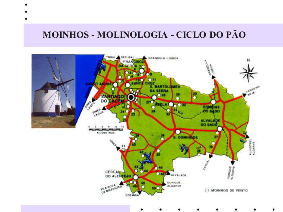 MOINHOS - MOLINOLOGIA - CICLO DO PÃO