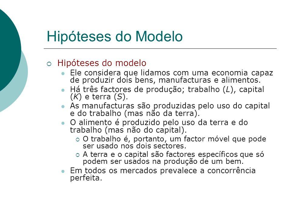 Hipóteses do Modelo Hipóteses do modelo