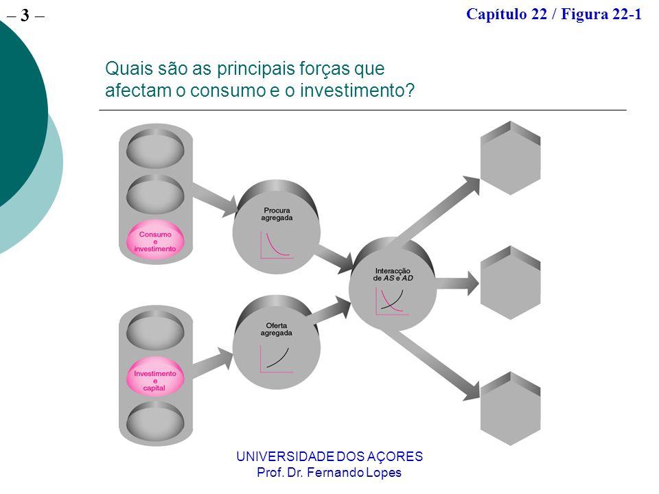 Quais são as principais forças que afectam o consumo e o investimento
