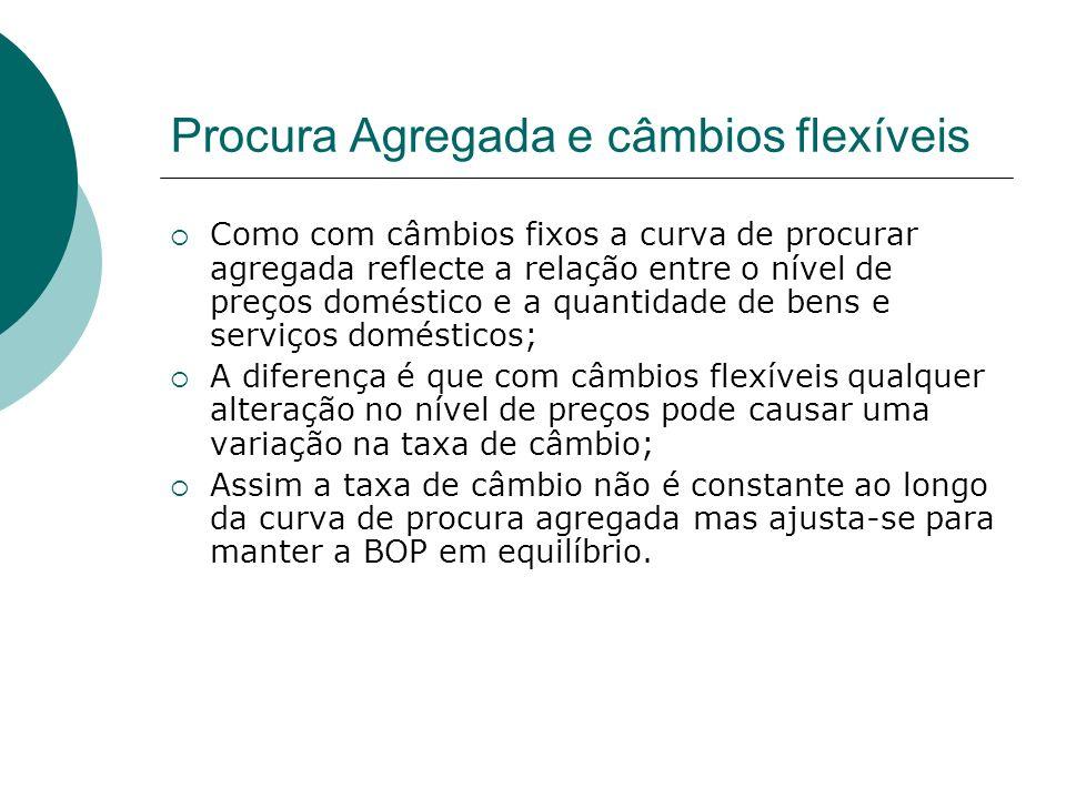 Procura Agregada e câmbios flexíveis