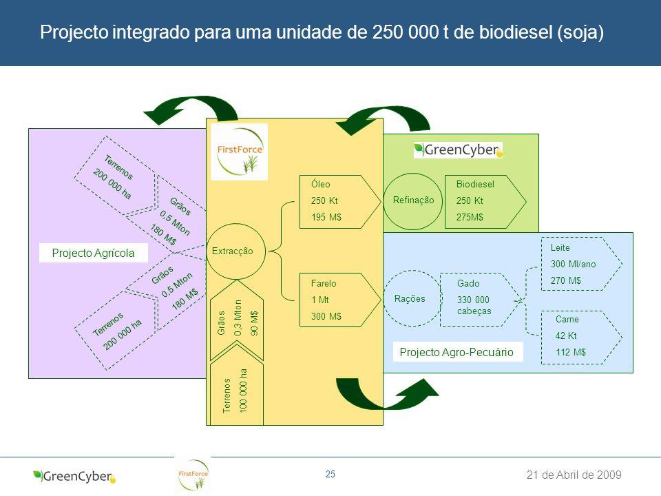 Projecto integrado para uma unidade de 250 000 t de biodiesel (soja)