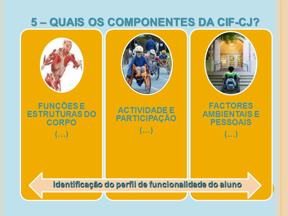 5 – QUAIS OS COMPONENTES DA CIF-CJ
