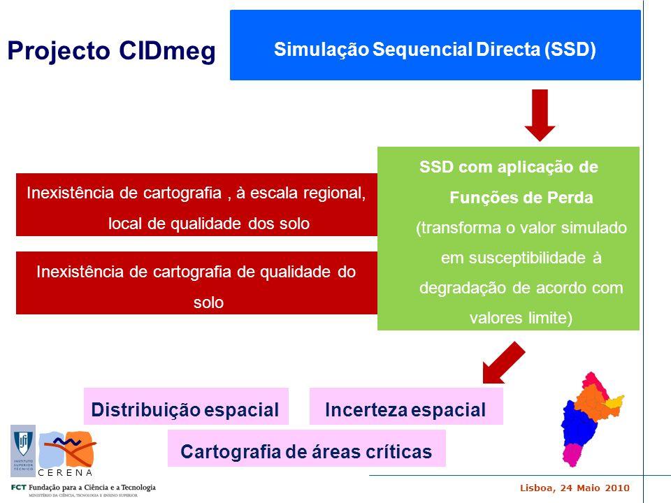 Simulação Sequencial Directa (SSD) Cartografia de áreas críticas