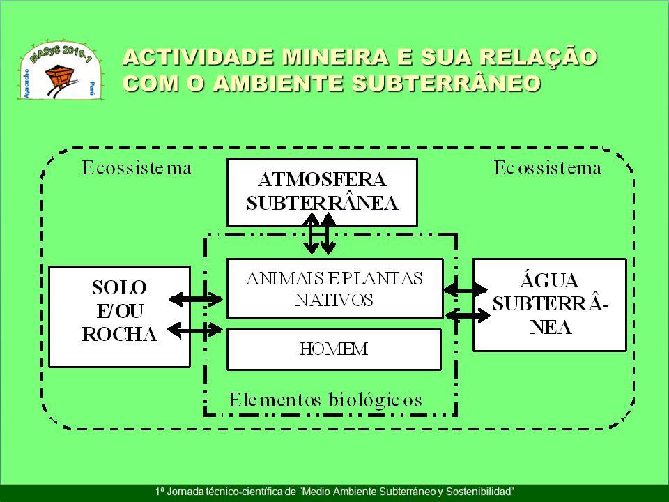 ACTIVIDADE MINEIRA E SUA RELAÇÃO COM O AMBIENTE SUBTERRÂNEO