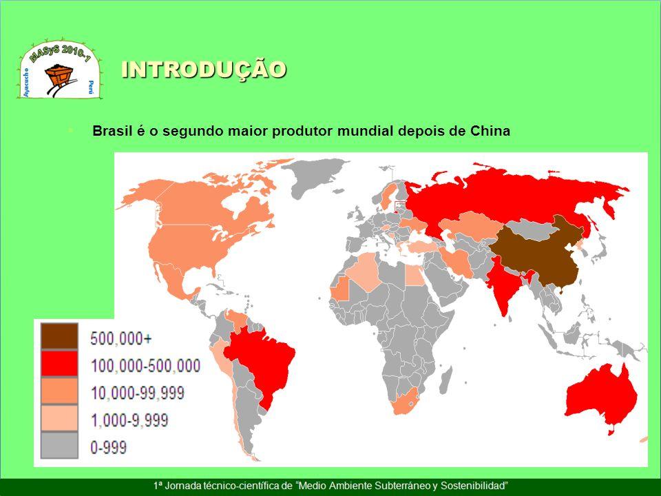INTRODUÇÃO Brasil é o segundo maior produtor mundial depois de China